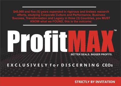 PROFIT MAX-for the Discerning CEOs